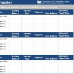 Credit Card Debt Management Spreadsheet