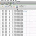 Excel Online Shared Workbook