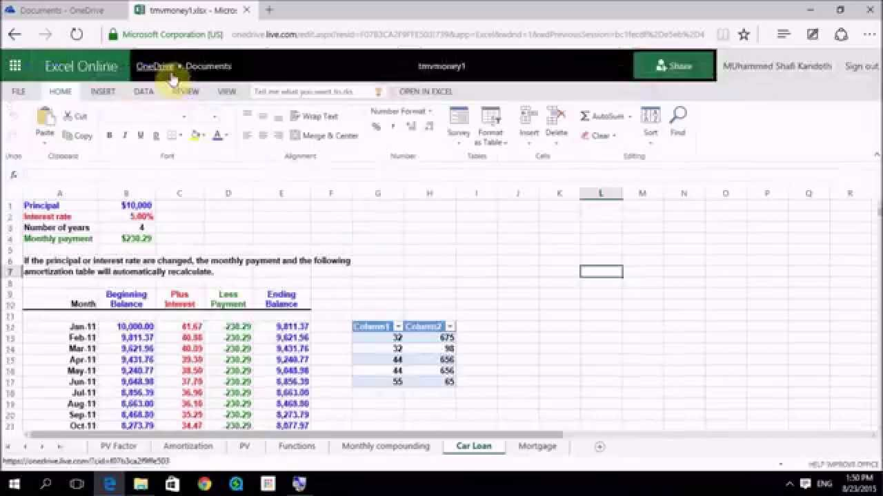 Sharing Excel 2010 Workbooks Online And On A Network