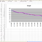 calories tracker spreadsheet