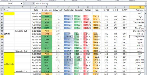 diet tracker spreadsheet