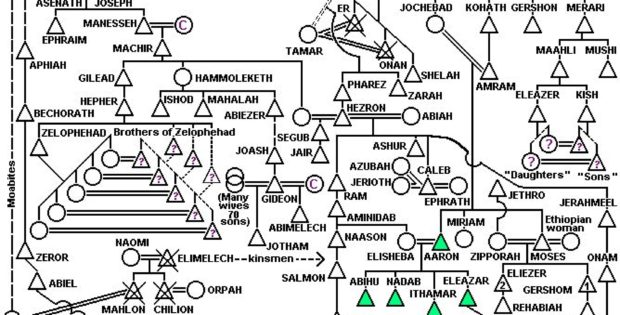 online family tree maker download timelines office com