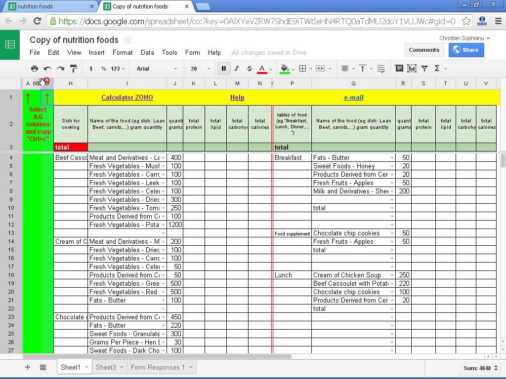 Diabetes Excel Template Cablo Commongroundsapex Co