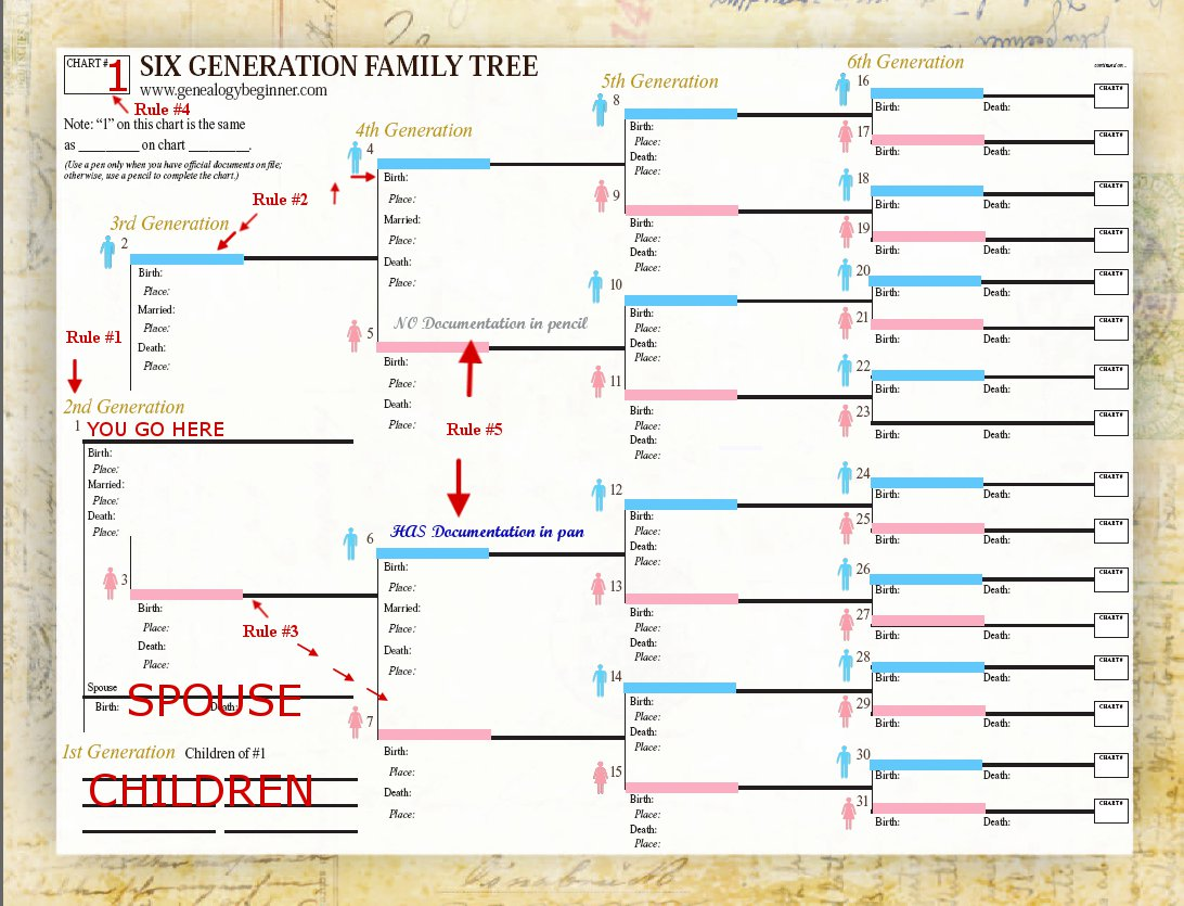 Genealogy Spreadsheet Template