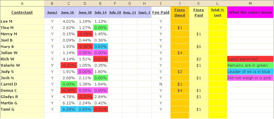 Biggest Loser Excel Spreadsheet